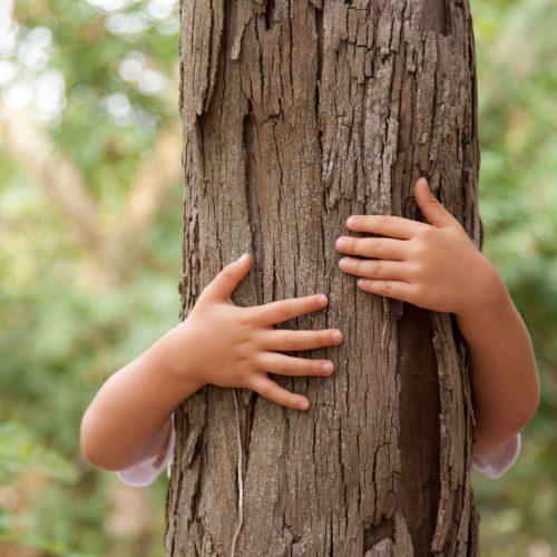 Scegliere una carta sostenibile ecologica e certificata e tecniche di stampa green sono gesti di rispetto verso l'ambiente