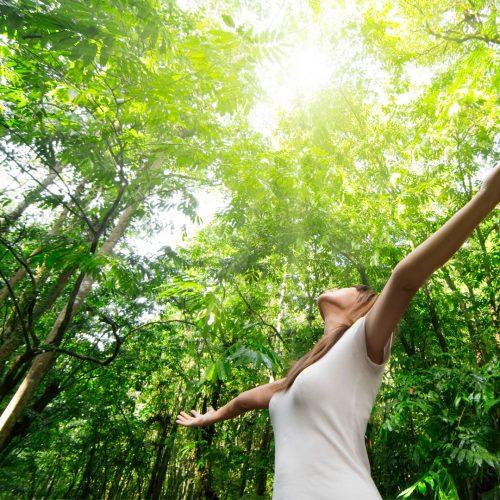 Scegliere energia pulita è un modo per vivere in armonia con l'ambiente