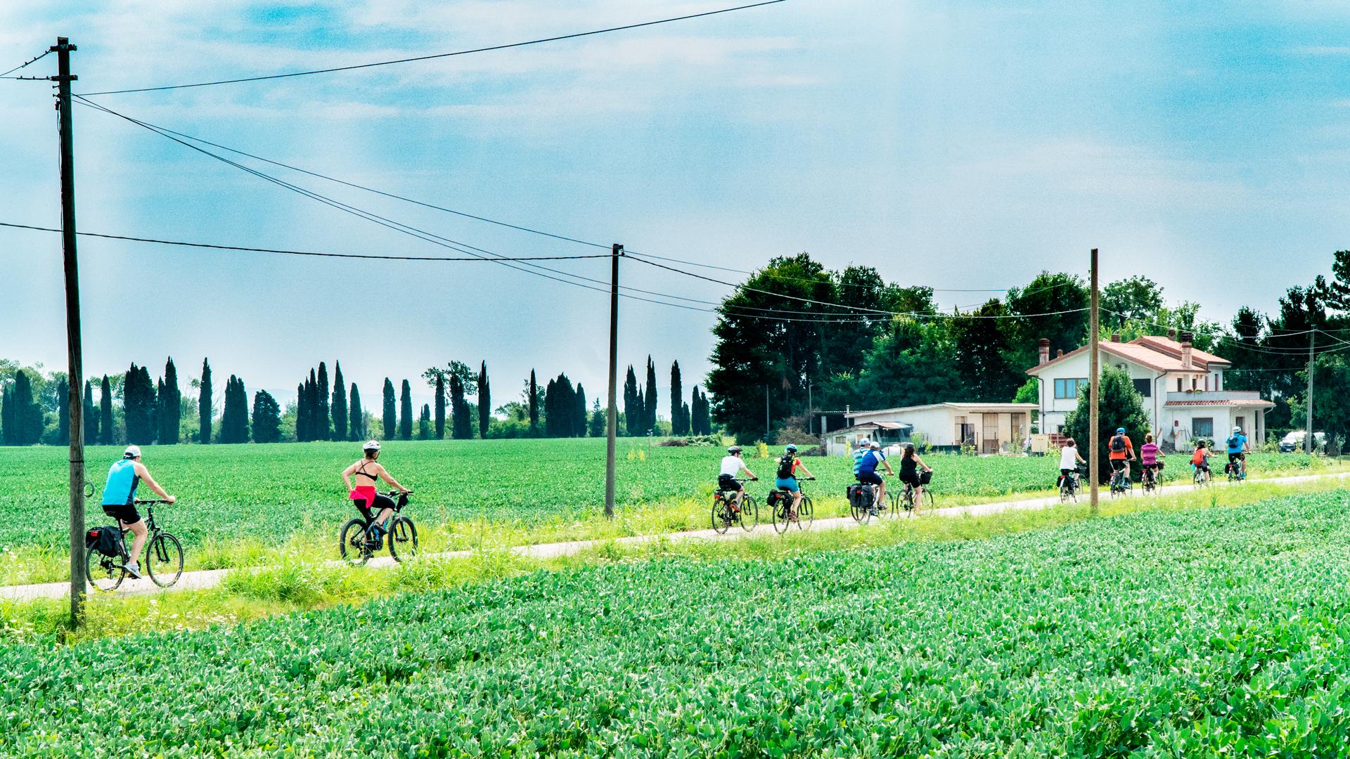 Uno degli insegnamenti dal Cicloturismo fra le riserve naturali della valle Cavanata in provincia di Gorizia, Friuli